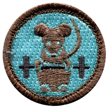 Funny Merit Badges - 04