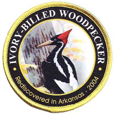 Ivory Billed Woodpecker Patch