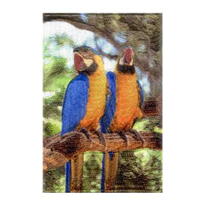 Combination Patch Tropical Birds